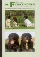 Fryske hounen